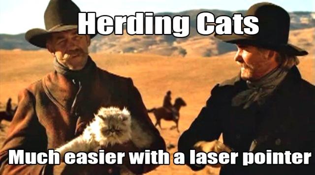 cat_herder_meme